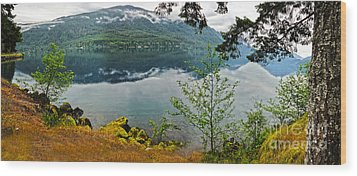 Lake Crescent - Washington - 02 Wood Print by Gregory Dyer