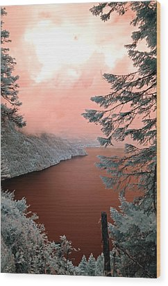 Lake Crescent Light Wood Print by Rebecca Parker