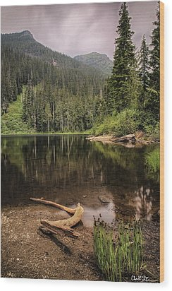 Lake Elizabeth Wood Print