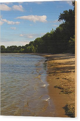 Lake Erie Shore 3 Wood Print