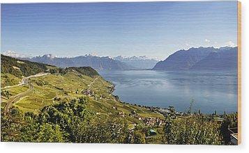 Lake Geneva Vineyards Wood Print by Rob Hemphill
