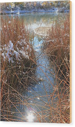 Wood Print featuring the photograph Lake Glitter by Diane Alexander
