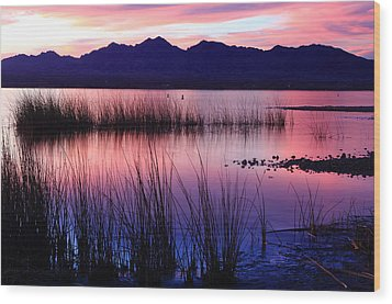 Lake Havasu Sunset Wood Print by Eric Foltz