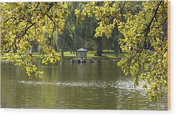 Wood Print featuring the photograph Lake In Boston Park by Alex King