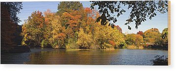 Wood Print featuring the photograph Lake In Central Park In Fall by Yue Wang