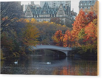 Lake In Central Park Wood Print