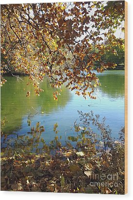 Lake In Early Fall Wood Print