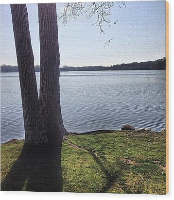 Lake In The Summer Wood Print by Christy Beckwith