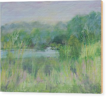 Lake Isaac Impressions Wood Print by Lee Beuther