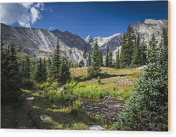 Lake Isbelle Mountains Wood Print by Michael J Bauer