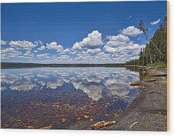 Lake Lewis Reflections Wood Print