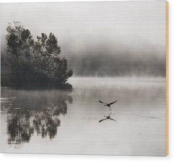 Lake Logan Fog And Heron - Flight Wood Print