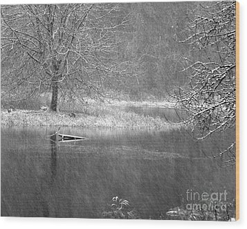 Lake Lois Wood Print by Chuck Flewelling