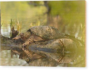 Lake Master Wood Print