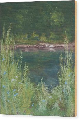 Lake Medina Wood Print by Lee Beuther