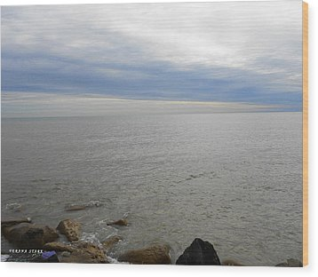 Lake Michigan 3 Wood Print
