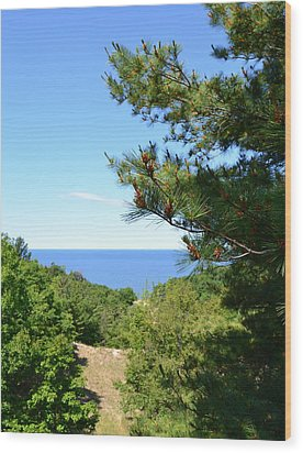Lake Michigan From The Top Of The Dune Wood Print by Michelle Calkins