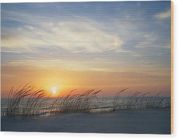 Lake Michigan Sunset With Dune Grass Wood Print