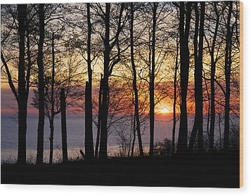 Lake Michigan Sunset With Silhouetted Trees Wood Print