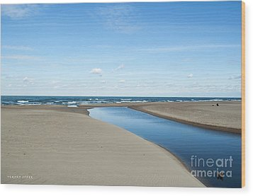 Lake Michigan Waterway  Wood Print
