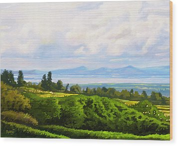 Wood Print featuring the painting Lake Naivasha From Home by Anthony Mwangi