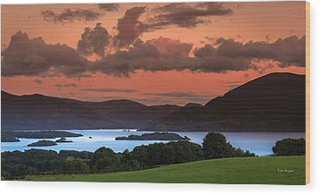 Lake Of The Learned Wood Print by Tim Bryan