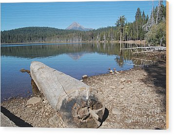 Wood Print featuring the photograph Lake Of The Woods 3 by Debra Thompson