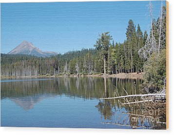 Wood Print featuring the photograph Lake Of The Woods 4 by Debra Thompson