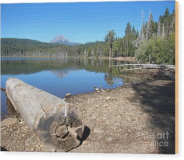 Wood Print featuring the photograph Lake Of The Woods 5 by Debra Thompson