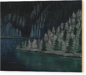 Lake Of The Woods Wood Print by Barbara St Jean