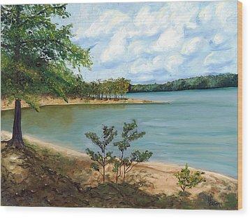 Lake Ouachita Wood Print by Helen Eaton