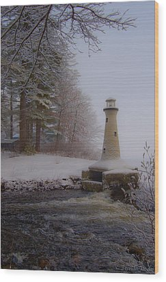 Lake Potanipo Lighthouse Wood Print by Brenda Jacobs