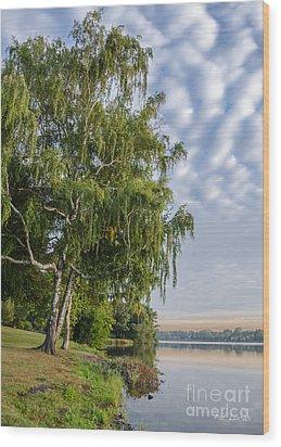 Lake Quannapowitt In Massachusetts  Wood Print by Pat Lucas