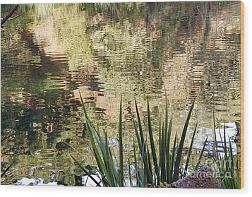 Wood Print featuring the photograph Lake Reflections by Kate Brown