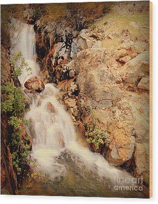 Lake Shasta Waterfall 2 Wood Print by Garnett  Jaeger