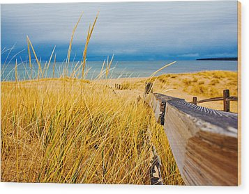 Lake Superior Beach Wood Print