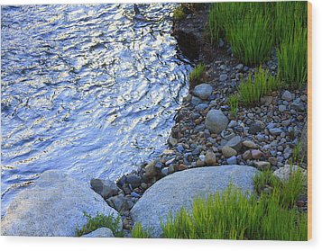 Lake Tahoe River's Edge Wood Print by Anne Barkley