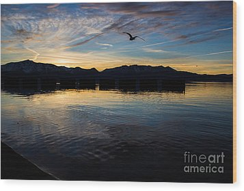 Lake Tahoe Sunset Wood Print by Suzanne Luft