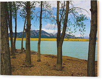 Lake Through The Trees Wood Print