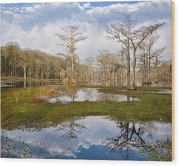 Lake View Wood Print by Denis Lemay