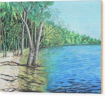 Lakeland 2 Wood Print