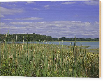 Lakes Of Indiana Wood Print by Thomas Fouch