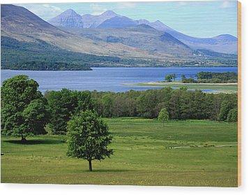 Lakes Of Killarney - Killarney National Park - Ireland Wood Print