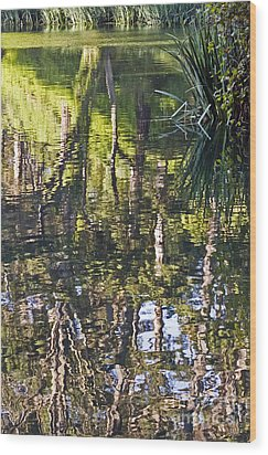 Wood Print featuring the photograph Lakeshore Reflections by Kate Brown