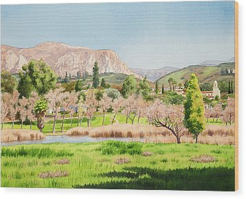 Lakeside California Wood Print by Mary Helmreich