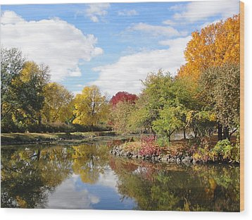 Lakeside Park Wood Print