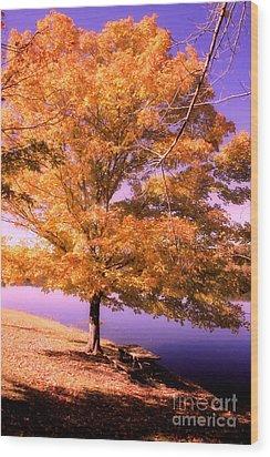 Lakeside Tree Wood Print