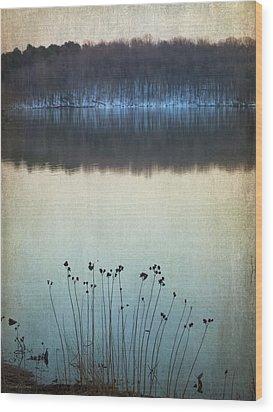 Lakeside Winter Flowers Wood Print