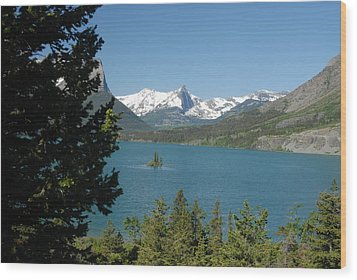 Lakeview In Glacier National Park Wood Print by Larry Moloney
