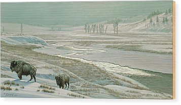 Lamar Valley - Bison Wood Print by Paul Krapf